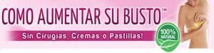 banner_comoaumentarsubusto